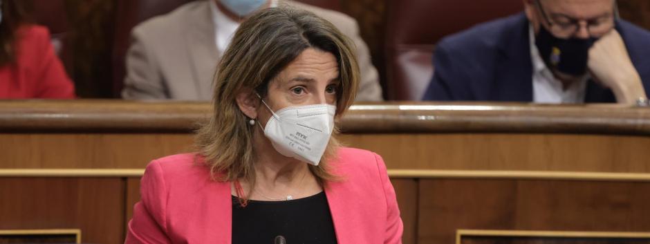 Teresa Ribera en el Congreso