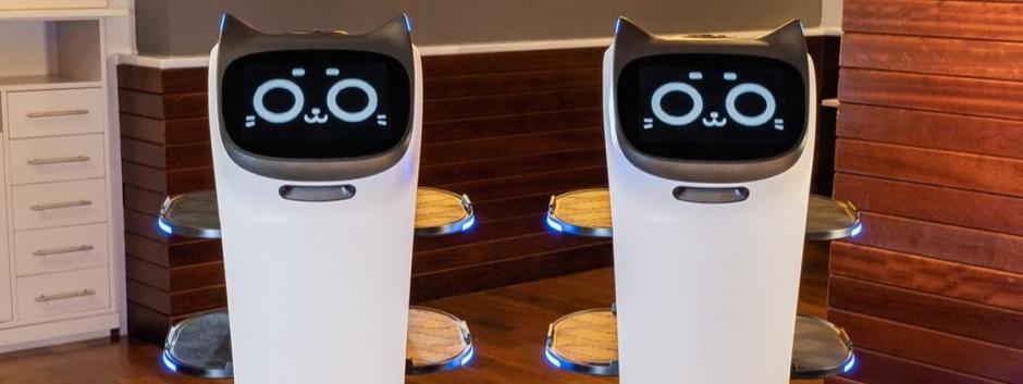 Hollabot y Bellabot listos para atender a los clientes